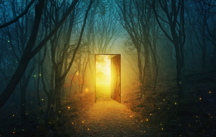 Door In The Forest.jpeg