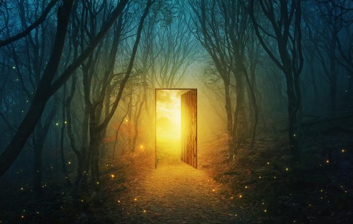 Door In The Forest.jpeg